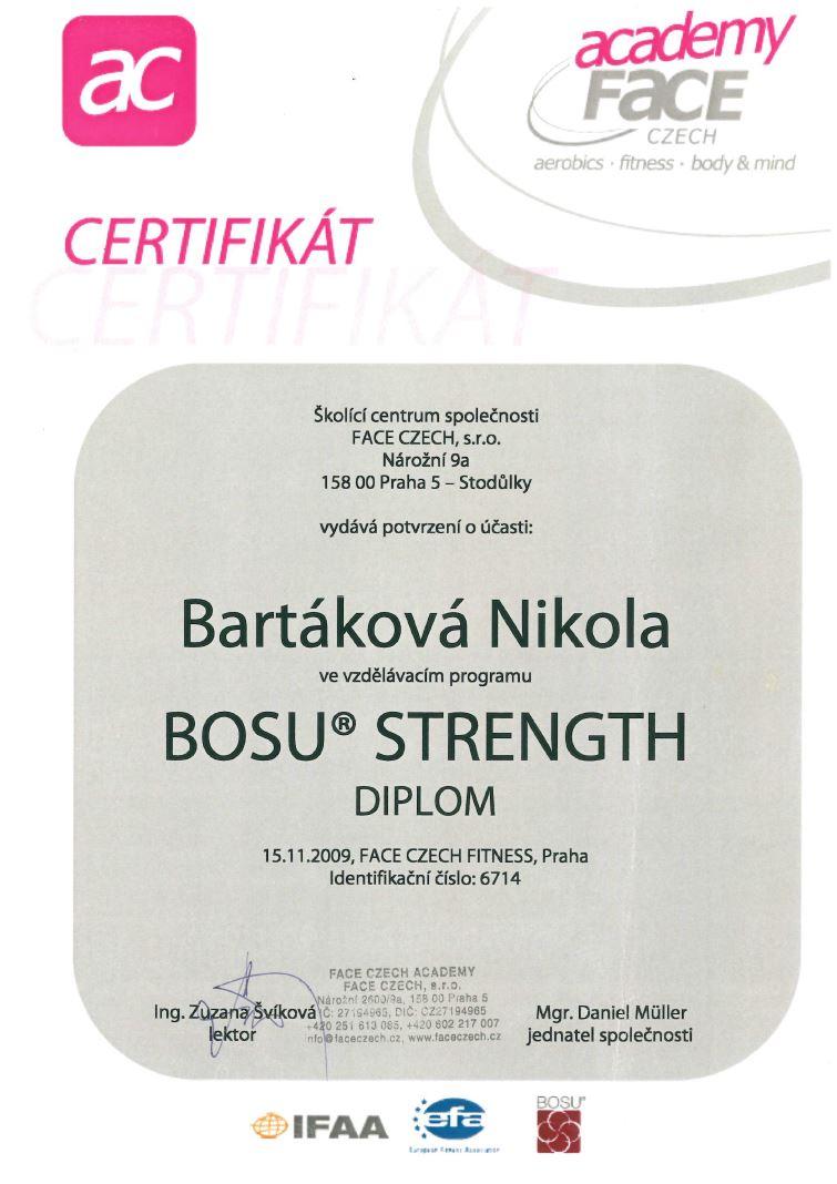 certifikat bosustrength 2009