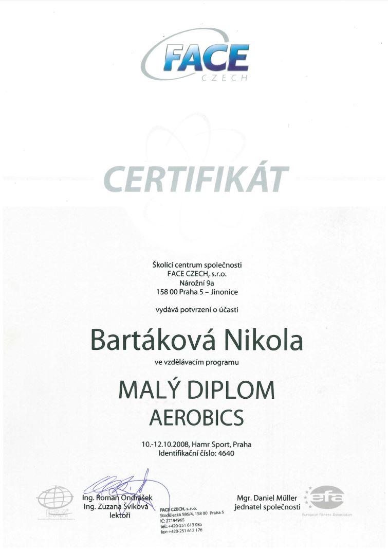 certifikat malydiplomaerobics 2008